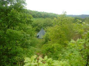 V lese jako doma